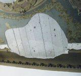 45 - Restauro murale e lapideo Genova - Mara Beccaris