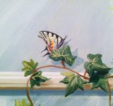Dettaglio trompe l'oeil - farfalla | Mara Beccaris Genova