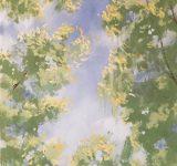 Dipinto ad olio su tela raffigurante cime alberate | Mara Beccaris Genova